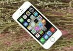loat-smartphone-xin-giam-gia-tet-nguyen-dan-nen-mua-thoi-diem-nay