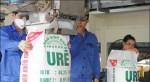 Công nhân ngành phân bón điêu đứng vì thiếu việc