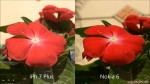 So sánh camera iPhone 7 Plus và Nokia 6