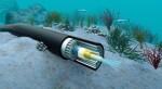 Có thể cần 2-3 tuần để khắc phục sự cố đứt cáp quang biển AAG
