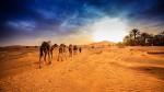 Người Do Thái vượt sa mạc với không một giọt nước như thế nào?