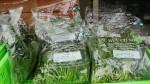 Thực phẩm hữu cơ được ưa chuộng vì sạch và nhãn mác rõ ràng