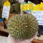 Sầu riêng mini Thái bị nghi Trung Quốc: dân kinh doanh tuyên bố… dẹp hàng