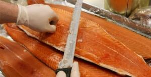 Đừng vội tẩy chay cá hồi nuôi vì