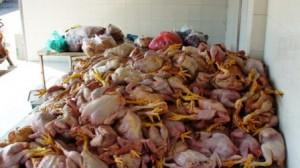 Người tiêu dùng tố cáo thực phẩm bẩn bằng cách nào?