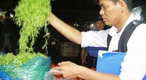 Vụ rau muống bào ngâm hóa chất: Xác định được người bán hóa chất độc hại