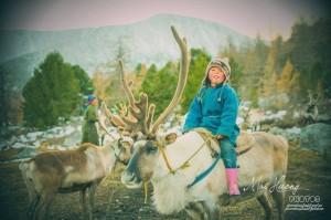 Cô gái Việt sống cùng bộ lạc chăn nuôi tuần lộc ở Mông Cổ