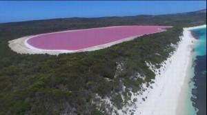 Đã tìm ra lời giải về hồ nước màu hồng bí ẩn ở Úc