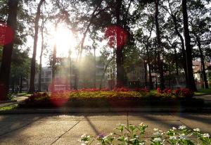 Nét quyến rũ của buổi sáng Sài Gòn