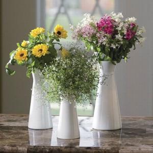 3 loài hoa mang phong thủy xấu cho nhà ở phải tránh ngay