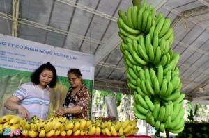Chuyên gia chỉ cách khởi nghiệp với nông sản hữu cơ