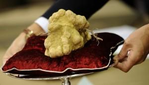 10 món ăn đắt đỏ nhất thế giới