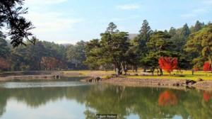 Ngôi làng thần tiên của Nhật Bản