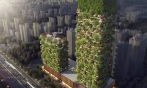 Trung Quốc: Trồng rừng từ mặt đất… lên tới trời xanh