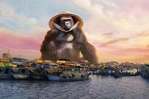 Bộ ảnh chế chú Kong chuyển 'hộ khẩu' về Việt Nam gây 'bão' trên mạng xã hội