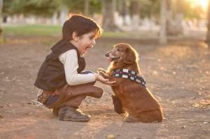 Từ chối được 'cho không' chú chó tật nguyền, cậu bé nói một câu khiến ông chủ tiệm chết lặng