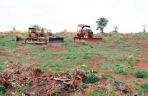Trình tự thu hồi đất bị lấn chiếm được quy định thế nào?