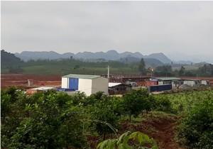 Xây trang trại nuôi heo 'chui': Masan bị phạt bao nhiêu?