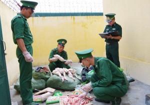 Gần 200 kg thịt vịt đông lạnh đã bốc mùi hôi thối bị thu giữ tại Lào Cai
