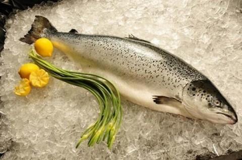 Trước khi mua và chế biến cá hồi đắt đỏ thì phải biết những điều này