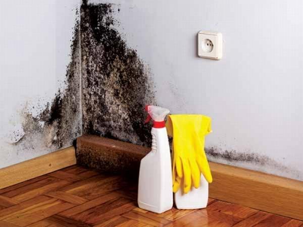 12 sản phẩm gia dụng bạn thường dùng có thể gây nguy hiểm tính mạng