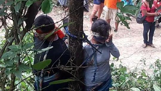'Bị trói vào cây, người phụ nữ bị kiến cắn chết