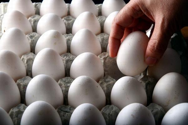 Thấp thỏm nghe tin nhập khẩu trứng, muối