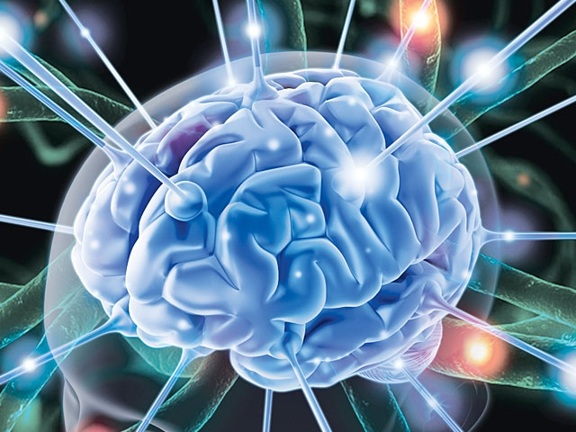 Bí ẩn người không não vẫn sống khỏe, chỉ số IQ cao và học giỏi xuất sắc