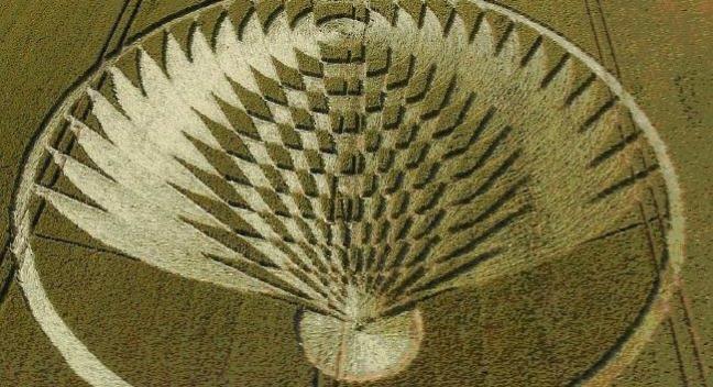 Giải mã thông điệp bí ẩn từ những vòng tròn trên cánh đồng