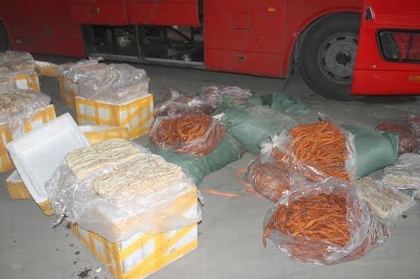 Hàng tấn nội tạng thối trên xe container vượt miền Trung vào Nam tiêu thụ