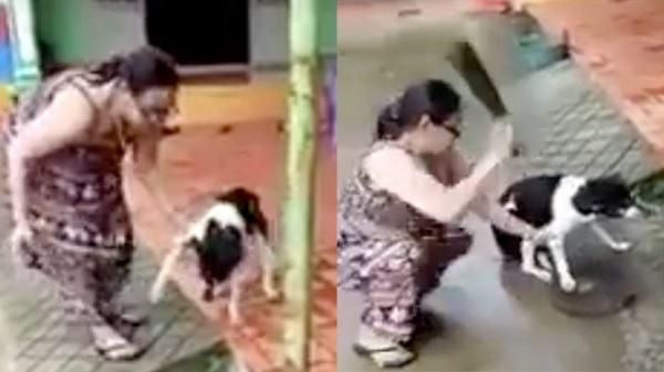 Bị công kích dữ dội, chủ nhân của chú chó bị chặt chân lên tiếng: 'Tôi chặt chân để bảo vệ nó'